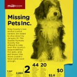 Missing Pets